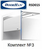 Ворота секционные Doorhan RSD01SC для гаража 2500х2390