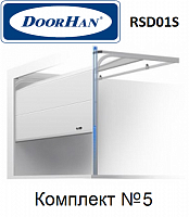 Ворота секционные Doorhan RSD01SC для гаража 2750х2215