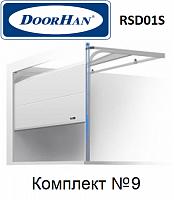 Ворота секционные Doorhan RSD01SC для гаража 3000х2515